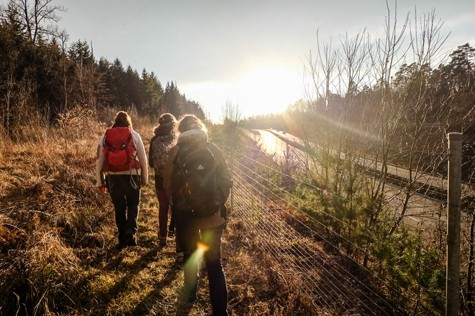 Grünes Wegenetz, Wanderung nach Grünbrückenuntersuchung  - Foto: NAJU BW