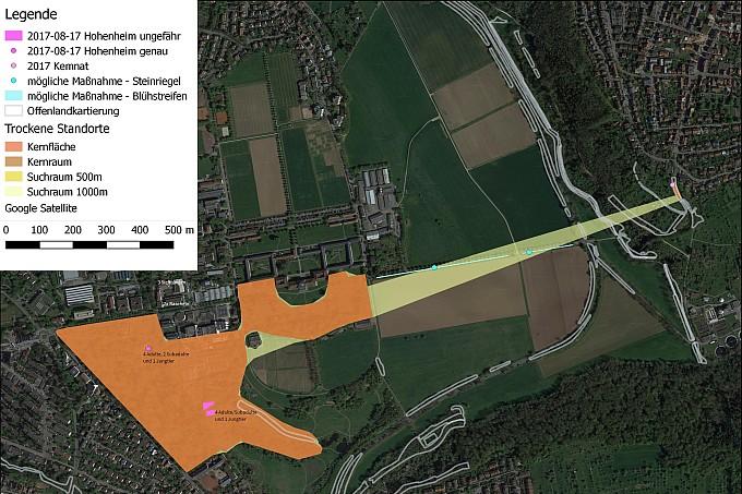 Ergebnisse Hohenheim mit Massnahmen - Erstellung: NAJU BW, Datengrundlage: Daten- und Kartendienst der LUBW (Landesanstalt für Umwelt) (Biotopverbund) und Google (Satellitenbild)