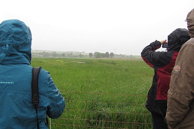 Besichtigung Feldvögelbrutplatz - Foto: NAJU BW / I. Häuser