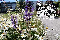 NABU Projekt Natur nah dran - Foto A. Marquardt