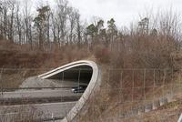 Grünbrücke B 295 bei Leonberg - Foto: N. Lechner