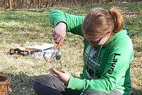 Wildlife Teamerin füllt Honig um - Foto: NAJU Hessen